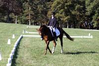 Maggie Proffitt on Wallstreet Melody, Novice Horse Trials Junior